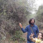 Delhi Walks <br>Central Delhi Ridge - 2014-15