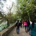Walk Series <br>Hauz Khas - 2015-2016