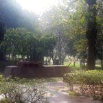 Walk Series<br>Shakti Sthal, Raj Ghat - 2015-2016